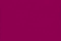 16-Rose-vif_Deco-Patine-ou-Jadis